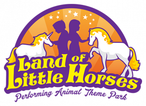 Land of Little Horses