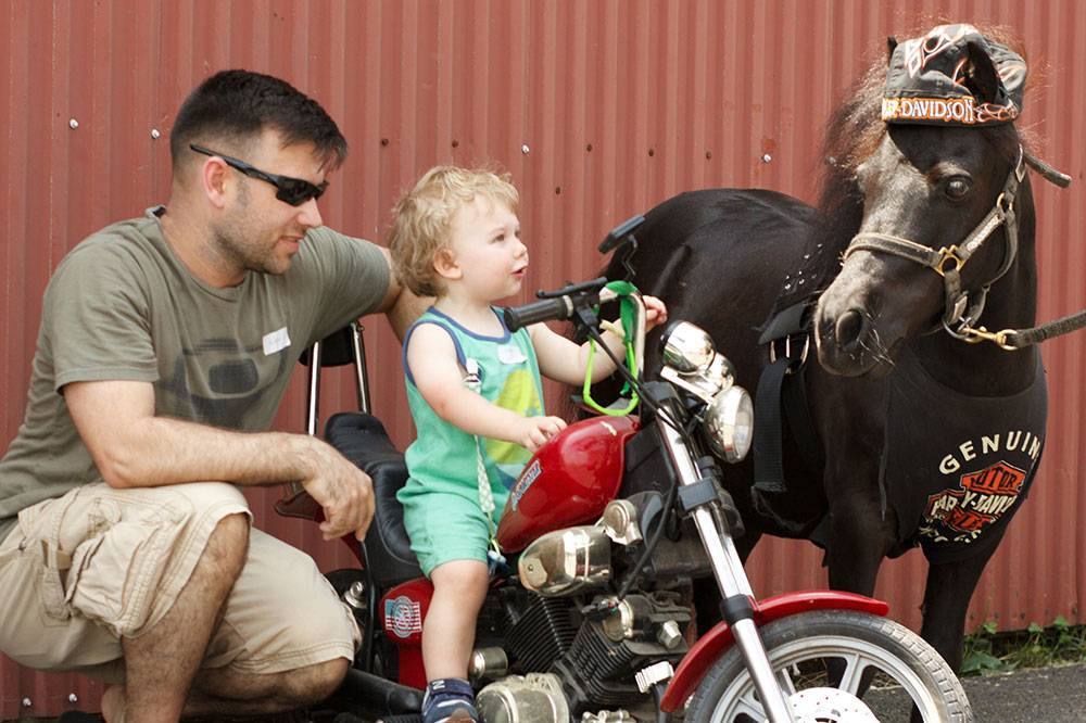 Child on Mini Harley Davidson at Land of Little Horses Animal Theme Park