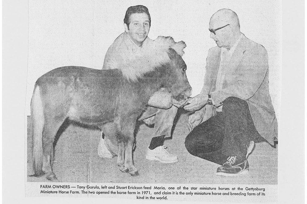 First Owners of Land of Little Horses Animal Theme Park