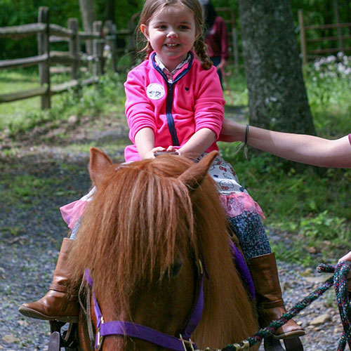 Young Girl Riding Pony at Land of Little Horses Animal Theme Park