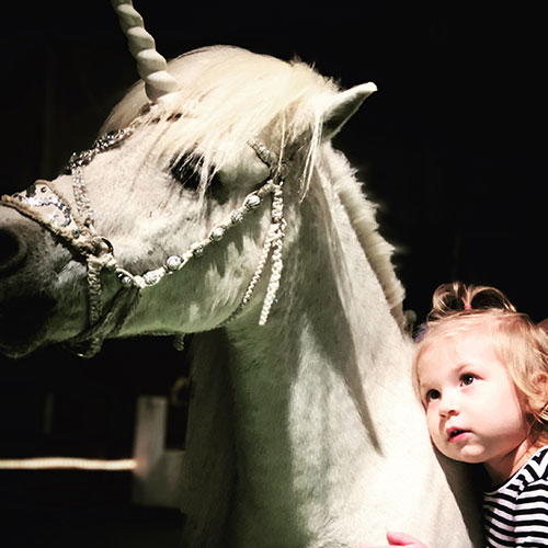 Young Girl Photo with Unicorn at Land of Little Horses Animal Theme Park